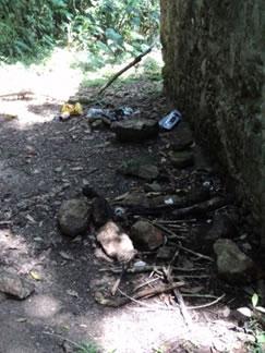 Figura 70. Exemplos da má conservação do patrimônio. Pichações, restos de lixo e fogueira e excesso de vegetação crescendo sobre as ruínas.